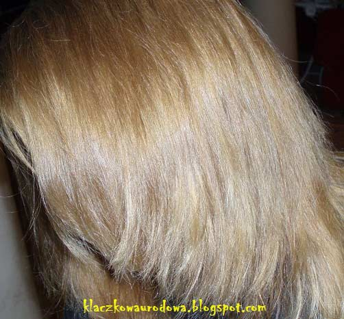 garnier olia 813 � champagne blonde hair colar and cut