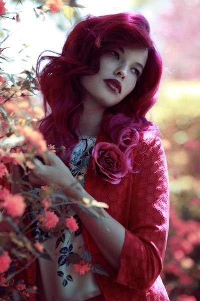 Rose-Red-1