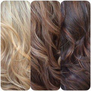 Comparison: Ash Blonde, Light Brown, Dark Brown