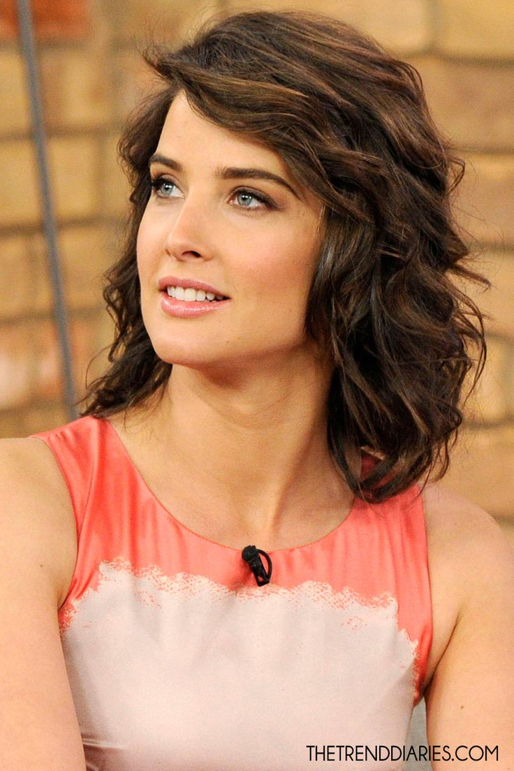Cobie Smulders Hair Color Hair Colar And Cut Style